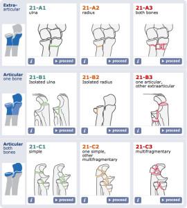 Forearm proximal